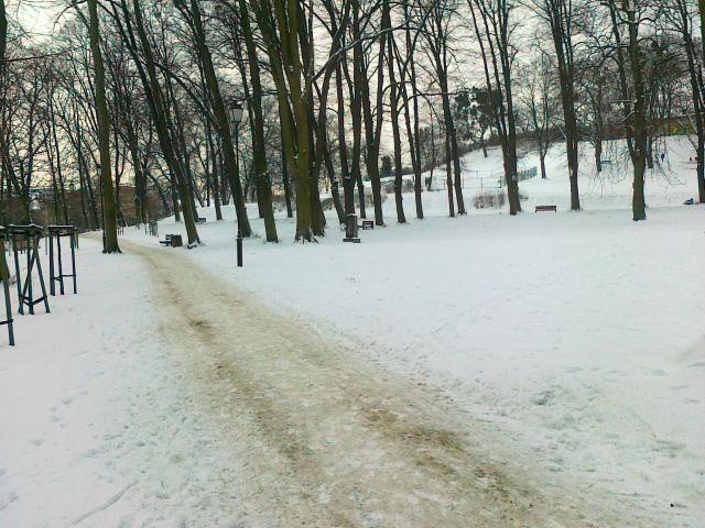 trasy zima nordic miasto