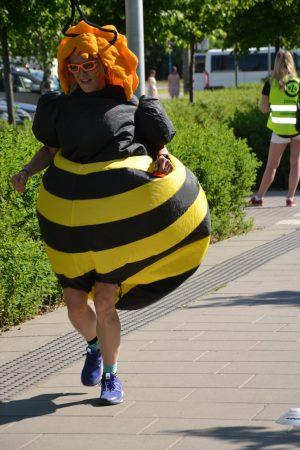 Kaśka jako pszczółka